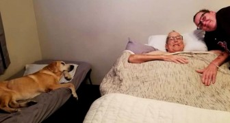 Een man met kanker en zijn hond sterven 1 uur na elkaar: een speciale band verenigde hen