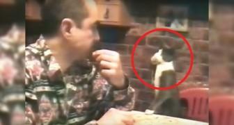 Este hombre es sordo, mira como su gato se comunica con él. Extraordinarios!