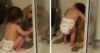 Un bambino di pochi mesi consola il cane terrorizzato dai tuoni: il video è dolcissimo