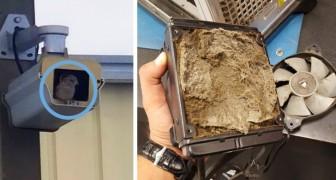 16 foto di disastri tecnologici che un tecnico non vorrebbe mai trovarsi ad affrontare
