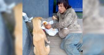 Un senzatetto cede parte del suo pasto a un cagnolino randagio: chi ha poco, è veramente più altruista