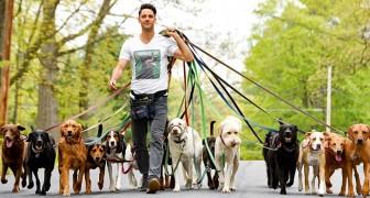 """Den här killen lyckas promenera med 20 hundar på samma gång, och förevigar det hela med """"klassfoton"""""""