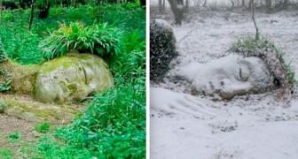 Questa affascinante scultura è tutt'uno con la natura e cambia aspetto a seconda delle stagioni