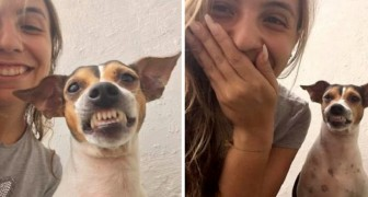 """De vrijwilligster van de opvang maakt een selfie met de hond: hij """"pronkt"""" met zijn mooiste glimlach"""
