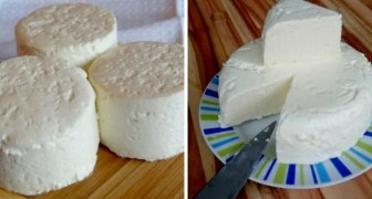 Fresh cheese you can make at home, and it takes only 3 ingredients to prepare