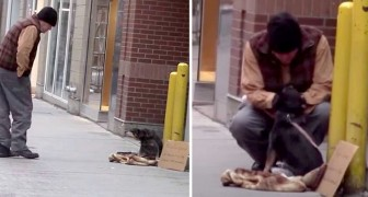 A Youtuber left a dog stranded on a sidewalk to see who would stop and help them: the only person who stopped was a homeless man