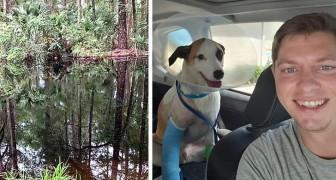 En man kämpar mot en 4 meter lång alligator med sina bara händer för att rädda sin älskade hund