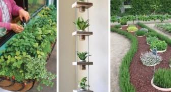 8 idee una più bella dell'altra per decorare la casa e il giardino con le erbe aromatiche
