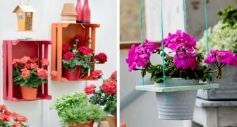 3 idee pratiche e piene di stile per esporre i vostri gerani sospesi fuori e dentro casa