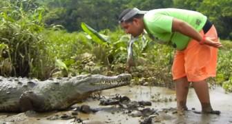 Habt ihr schon einmal jemanden gesehen, der ein Krokodil wie einen Hund füttert?