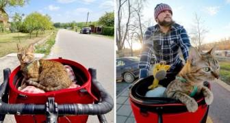 Auf seiner Reise mit dem Fahrrad findet er eine streunende Katze, jetzt durchqueren sie die Welt zusammen