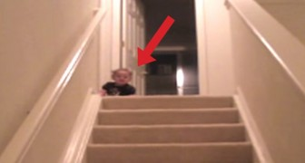 This child finds the fastest way to get down the stairs. HILARIOUS!