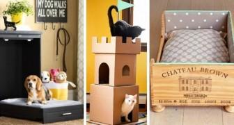 10 fantastiche cucce per cani e gatti realizzate riciclando cassetti, maglioni e non solo
