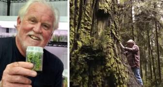 Dieser Mann klont die höchsten Bäume der Erde und pflanzt sie an Orten um, die für ihr Überleben besser geeignet sind