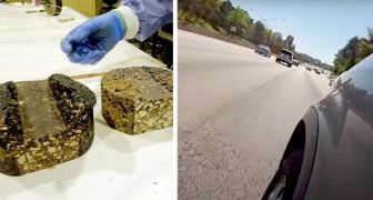 Il letame di maiale potrebbe sostituire il petrolio per la produzione di asfalto stradale: la ricerca