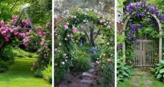 9 magnifiques arches fleuries pour décorer le jardin d'une manière unique et spectaculaire