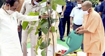 2 milioni di residenti indiani sono riuniti per piantare 20 milioni di alberi sulle rive del fiume Gange