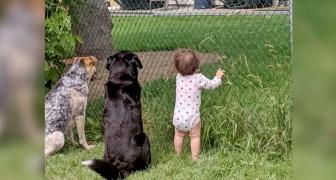 En flicka ser att grannen varje dag bjuder hennes små fyrbenta syskon på godsaker så hon bestämmer sig för att följa med