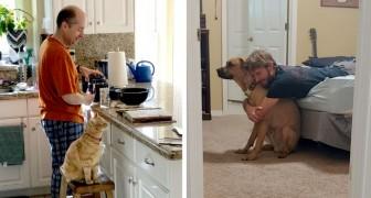 12 Väter, die sagten, sie wollten kein Tier im Haus haben, und jetzt völlig vernarrt in ihr Haustier sind