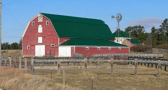 200 farmers remain silent during an auction so that the man who lost it could buy his farm back