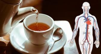6 tipi di tè ricchi di proprietà benefiche per la nostra salute: veri e propri elisir di benessere