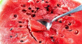 5 goede redenen om de zaden van watermeloenen niet weg te gooien: ze zijn rijk aan gunstige eigenschappen voor de gezondheid