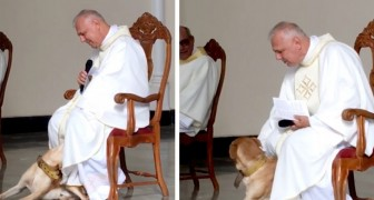 Um cachorro entra na igreja durante a missa: o padre não o afasta e começa a brincar com ele