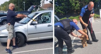 En man ser en liten hund instängd i bilen under solen: han räddar den genom att slå sönder fönstret med en yxa
