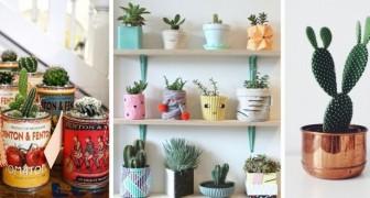 12 simpatiche proposte per arredare ogni stanza di casa con piccole piante di cactus