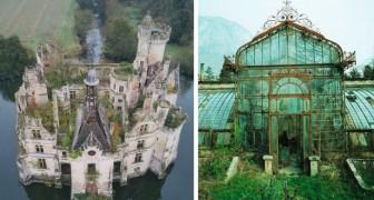 13 foto suggestive mostrano tutte le volte in cui la Natura si è ripresa i suoi spazi