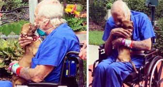 El anciano tiene una enfermedad: su perra le salva la vida atrayendo la atención de un hombre