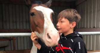 A 13-year-old boy throws himself into a canal to save a horse: he held his head up for an hour