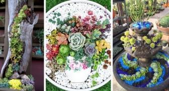 11 strepitose composizioni di piante grasse per decorare il giardino con brio