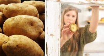 6 utilisations alternatives des pommes de terre, alliées économiques et efficaces dans diverses tâches domestiques