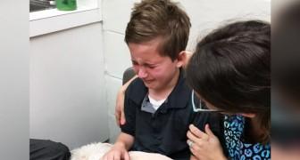 Un enfant réconforte son vieux chien dans les derniers moments de sa vie