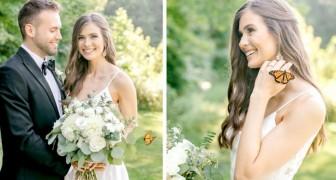 Durante il servizio fotografico una stupenda farfalla si unisce agli sposi: le foto sembrano uscite da una fiaba