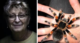 Een wanhopige man koopt een tarantula om te voorkomen dat zijn schoonmoeder elke dag in zijn huis verschijnt