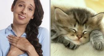 Il potere curativo dei gattini: foto e video di animali teneri ridurrebbero ansia e stress, secondo uno studio