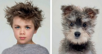 Een fotograaf getuigt van de ongelooflijke gelijkenis tussen honden en baasjes met prachtige foto's