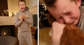 L'emozionante video di un bambino che riabbraccia finalmente il suo gatto scomparso da 7 mesi