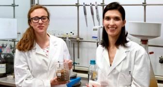 Due ricercatrici milanesi scoprono un processo per produrre carta utilizzando gli scarti di cibo