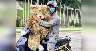 A poor father cries for joy when he finds a teddy bear in the garbage: I'll give it to my daughter