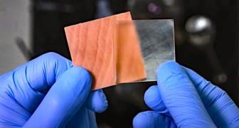 Un team di ricerca realizza un legno trasparente quasi come il vetro, per finestre resistenti ed ecologiche