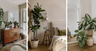 Arredare la camera da letto con le piante: 10 proposte irresistibili per portare il verde in casa