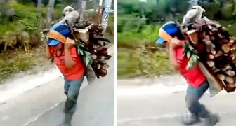 A poor child carries pounds of wood on his back with his faithful little dog: he never leaves him alone