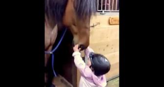 Een moeder vraagt haar dochter het paard te groeten, ze doet dit en hoe