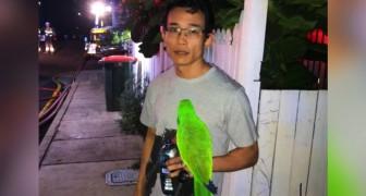 O papagaio grita o nome de seu dono no meio da noite, salvando-o de um terrível incêndio