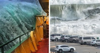 16 immagini a prova di mal di mare che mostrano tutta la potenza devastante delle onde