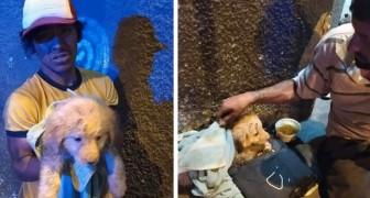 Un sans-abri prend soin d'un chiot qui a été abandonné sous ses yeux