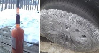 17 foto mostrano che il gelo non risparmia niente e nessuno: fanno venire freddo solo a guardarle